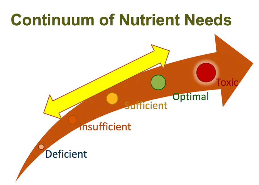 What is Your Health and Nutrient Status?